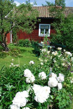 torparträdgård - Sök på Google