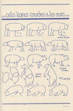 how to draw bears