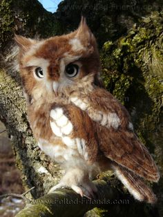 Needle felted Eastern Screech Owl youngster, made by Bianca of Felted-Friends.com