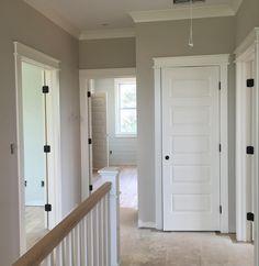 Elegant Hallway Door Knobs