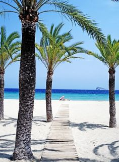 Off to #Benidorm? Let us easily compare 1000's of travel websites to make sure you get the best price online. Why search more than once? #HotelComparison