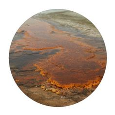 Red Mineral Water Yellowstone Park Poker Chip