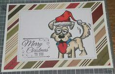 Crazy Dogs Christmas card