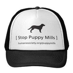 Stop Puppy Mills Hat