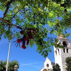 """""""Spideruccio ma dove ti sei aarrampicato? #igersitalia_swspidermantour. #igersmarche #ancona #sanciriaco #marche #italy"""" #amazingspiderman"""