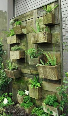 recycle your old wellies, boots into planters.  Create a vertical garden with broken planters and recycled wood