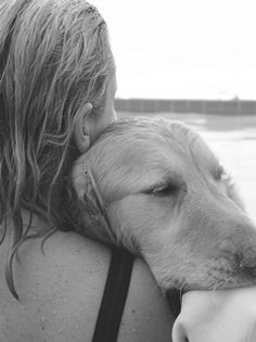 """""""Once someone (me) has had the good fortune to share a true love affair with a Golden Retriever, one's life and one's outlook is never quite the same."""" –Betty White"""