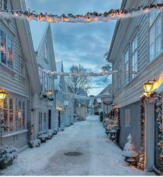 The stunning city of Stavanger in the snow, Norway Norway Winter, Winter Szenen, Winter Time, Winter Christmas, Norway Christmas, Christmas Time, Christmas Lights, Merry Christmas, Norwegian Christmas