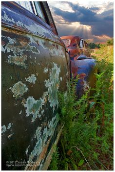 Highway to Heaven  Vintage Old Rusted Autos in Field by McAnany