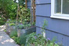 Nice colourful mix of plants Outdoor Structures, Nice, Garden, Plants, Color, Garten, Lawn And Garden, Colour, Gardens