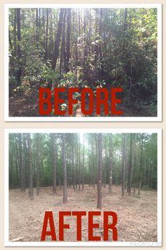 Hydro ax land clearing forestry mulching underbrushing flatrockconstruction.com 281-723-8488