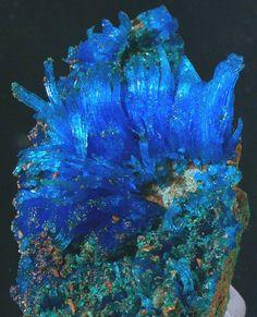 ChalcanthiteAztec Mine, Aztec Gulch, Alum Gulch, Harshaw District, Patagonia Mts, Santa Cruz Co., Arizona, USA