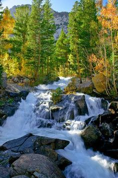 Autumn in South Fork Bishop Creek ~ Eastern Sierra Nevada Mountains, California. A must see! West Coast Road Trip, California Camping, California Usa, Autumn Scenery, All Nature, Sierra Nevada, Travel Usa, Wonders Of The World, Places To See