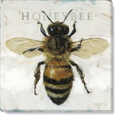 Gallery Wrap on Wood Frame ~ Honey Bee Ideal for any room, mix and match your favorites into groupings. Gygi has created looks that fit your home from botanical Canvas Art, Canvas Prints, Art Prints, Honey Bee Tattoo, Bee Painting, Bee Art, Bees Knees, Fauna, Wrapped Canvas