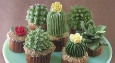 You'll want to get your hands all up in these cactus cupcakes. They are the sweetest ending to a Tex-Mex feast. Here's how to make them...  #fooddesign #foodart #AlanaJones-Mann http://www.finedininglovers.com/blog/curious-bites/cactus-cupcakes/