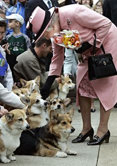 Nothing makes the Queen happier than a corgi. (AP Photo/Canadian Press, Paul Chiasson)