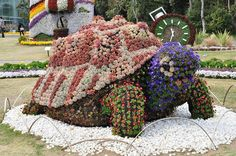 Turtle floral topiary sculpture land art