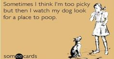14 Things People With Dogs Can Relate To When It Comes To Poop -      Being a dog parent is probably the most rewarding thing in any human's life. The only not so fun thing about it is having to deal with the whol...