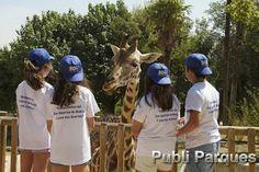 Zoo Aquarium de Madrid comienza sus campamentos de verano con el taller