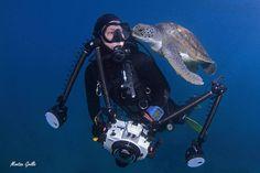 ¿a que molesta? tortuga acosando a fotógrafo.. www.flowcheck.es Taller de equipos de buceo #buceo #scuba #dive