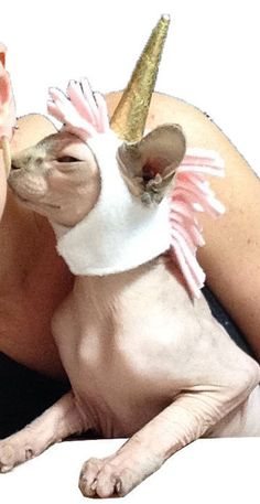 Sphynx Cat Unicorn Costume Hat for a Cat! The Kitty Cap Cat Hat in Fleece with…