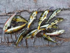 Mato Lures |   Photo Gallery