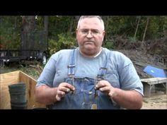 How To Divide Ornamental Grass by Mikes BackyardNursery - YouTube #Gardens #Ornamental_Grasses