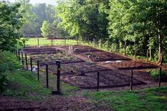 Garden layout and fence idea
