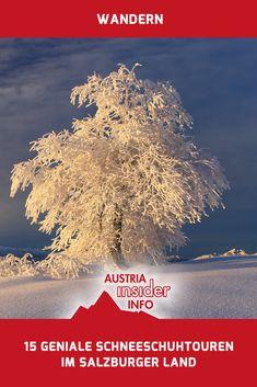 Austria, Movie Posters, Travel, Europe, Snowshoe, Travel Pictures, Road Trip Destinations, Mountains, Viajes