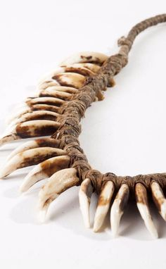 North America - Great Plains, Cheyenne Indian Reserves | Necklace; coyote teeth and natural fiber.  L: 52 cm | ca. end of the 19th century | Est. 1'200 - 1'500€