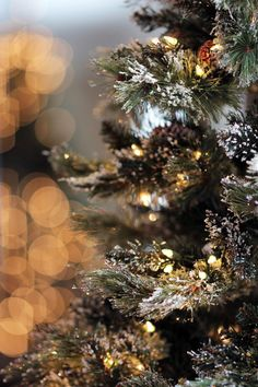 umla: (via Pin by Thoma Lou Maddy on beautiful wreaths Christmas Mood, The Night Before Christmas, Xmas, Christmas Collage, Rustic Christmas, Merry Christmas, Winter Fairy, Winter Garden, Christmas Background