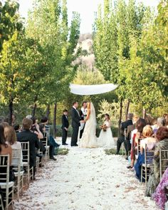 Laura and Evan exchanged teary vows in a Napa olive grove on a white-rose-petal-covered aisle with the bride's son and daughter by their sides.