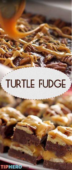 Turtle Fudge Recipe Chocolate caramel and pecans? Yes please! Fudge Recipes, Candy Recipes, Chocolate Recipes, Sweet Recipes, Holiday Recipes, Dessert Recipes, Chocolate Fudge, Chocolate Tarts, Chocolate Cheesecake