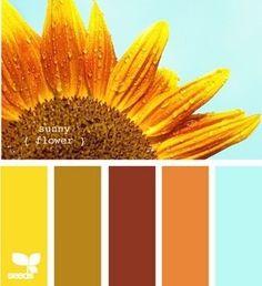 Color scheme for kitchen.