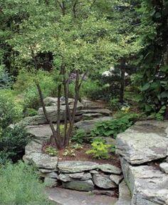 Lush garden rocks