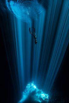 In photographs: fascinating underwater worlds
