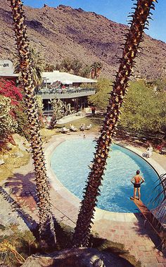 The Tennis Club pool Palm Springs. We had my Sister in law wedding reception here. 20 years ago. Still great place