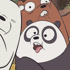 Polar,Panda e Pardo😽