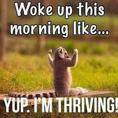 I start my day thriving. Www.kspindle.le-vel.com