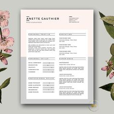 Creative Resume Template  Aurora By Quality Resume On