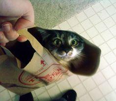¿Nos vamos de compras?