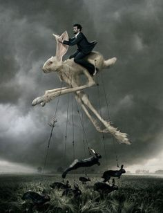 surrealism film essay