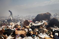 Children and adults scavenge for recyclables and other usable items at the Trutier dump on the outskirts of Port-au-Prince, on March 7 in Haiti. We Are The World, Small World, Change The World, Haiti Beaches, Port Au Prince Haiti, Slums, Green Trees, Natural Disasters, Photojournalism