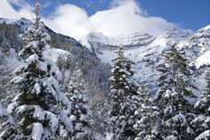 Most new snow January 13, 2014. Sandance Utah 22 inches. The nice little ski area near Provo, Utah owned by actor Robert Redford.