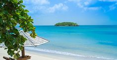 Photos and Videos at Sandals Halcyon Saint Lucia
