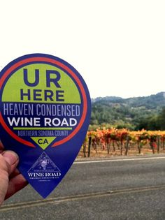 Along the Wine Road