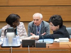 Professor Molyneux talking to the WHO DG and WHO Regional Director for Africa