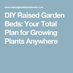 DIY Raised Garden Beds: Your Total Plan for Growing Plants Anywhere