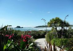 The view from The Bay House, Tauranga-Bay. A stunning location for a beach wedding ceremony. Top Destinations, South Island, West Coast, New Zealand, Wedding Ceremony, How To Memorize Things, To Go, Weddings, Beach