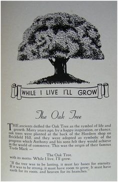 """ANTHONY HORDERN & SONS LTD, Brickfield Hill, Sydney """"While I live, I'll Grow""""  the tree was their badge"""